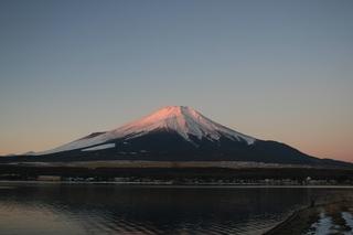 1月2日早朝の長池から.jpg