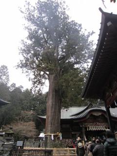 1月3日浅間神社初詣 (11).JPG