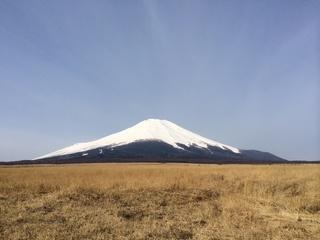 4月13日野焼き2.jpg
