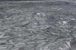 氷上3.jpg