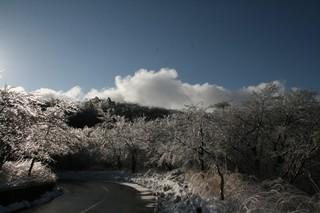 雨氷8.jpg
