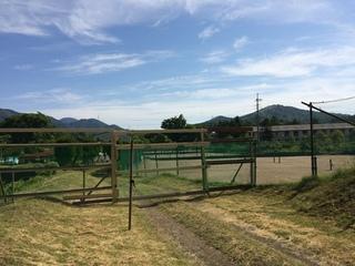 鹿用フェンス1.jpg